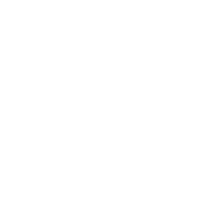 Acting the Party