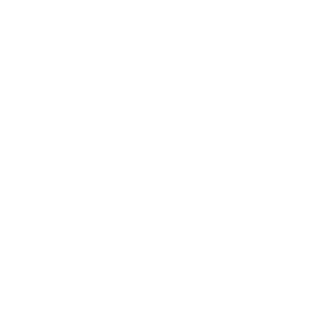 Amber Support Services